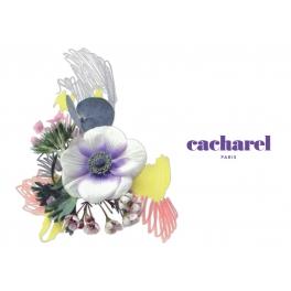 Cacharel 2019